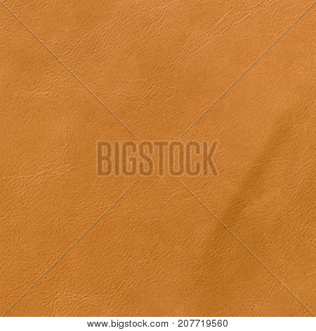 Leather Texture Background For Fashion Background.