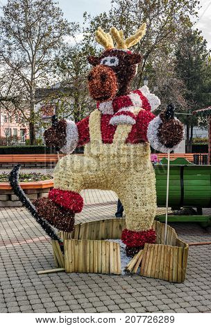 Christmas Deer On The Nyiregyhaza Central Square