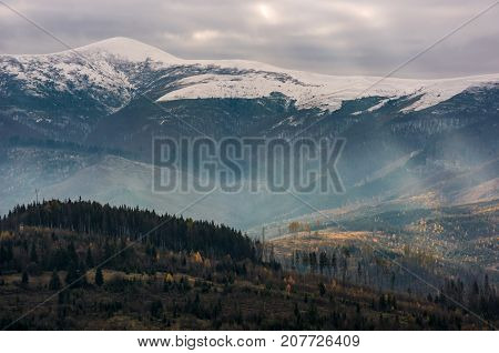 mountain with snowy top over the hill with forest. lovely late autumn scenery with light beams striking through overcast sky