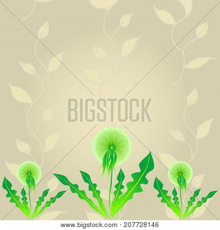Abstract Floral Dandelion Background. Vector Illustration EPS10