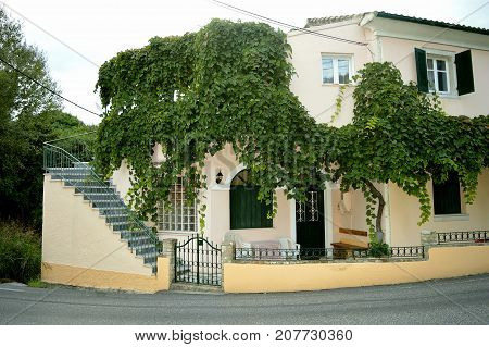 Ipsos Corfu Greece - October 29 2017 : House with a grape vine growing on the walls in the town of Ipsos in Corfu