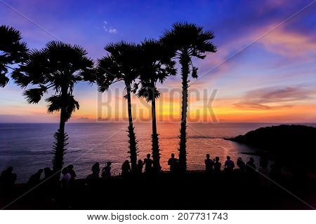 Silhouettes Of People Watching Dramatic Sunset With Palm Tree Silhouette In Phuket