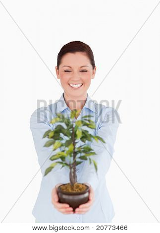 Attractive red-haired female holding a houseplant while standing on a white background