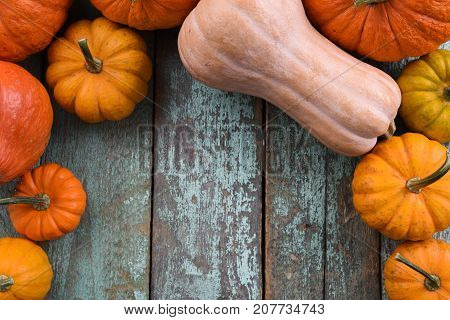 Stillife of bright orange pumpkins and butternut squashes on blue wooden table above view copyspace. Harvest festival Thanksgiving symbol