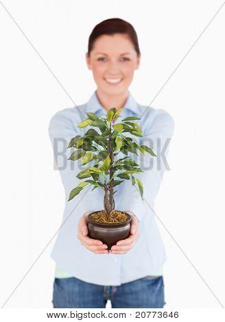 Wunderschöne Rothaarige Frau hält eine Zimmerpflanze stehen auf einem weißen Hintergrund