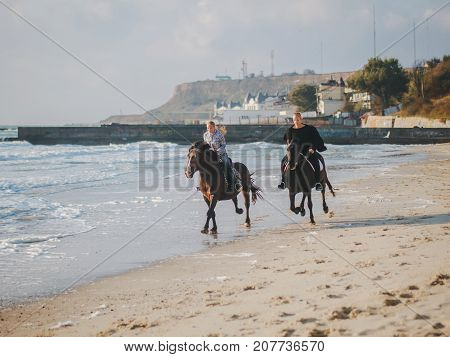 View of women riding beautiful horses wading through the sea splashing water drops around in golden light sunset or sunrise. Stallion walking in ocean water
