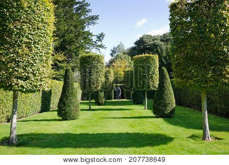MOUNT EDGCUMBE CORNWALL. August 17th 2017. An avenue of topiary trees at Mount Edgcumbe Country Park Cremyll Cornwall. The Country Park is still bringing in many visitors - both tourists and locals - despite the changing season.