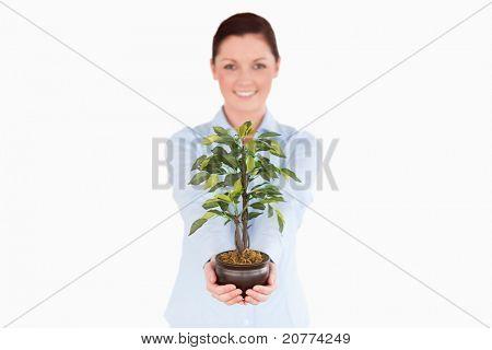 Attraktive Rothaarige Frau hält eine Zimmerpflanze stehen auf einem weißen Hintergrund