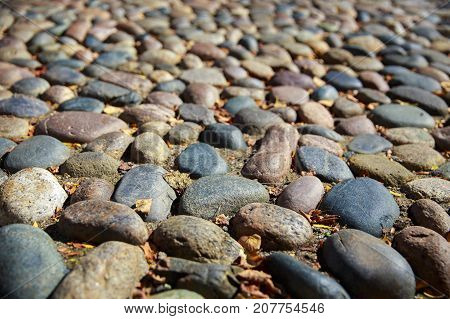 cobblestone pavement in perspective. background and texture of old cobblestones and autumn leaves