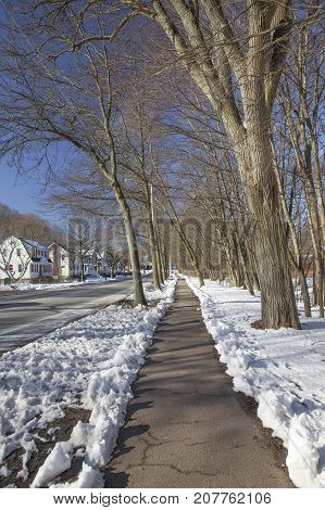 pavement cleared of snow in the suburbs. town street in winter. Vertical