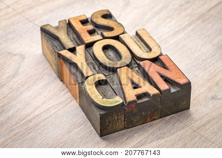 yes, you can - motivational quote abstract in vintage letterpress wood type blocks