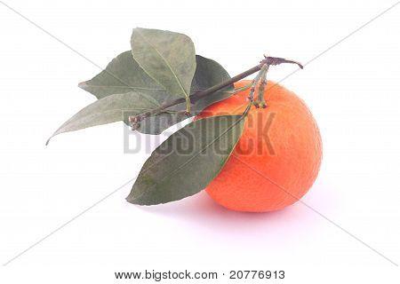 Ripe Mandarin And Leaf