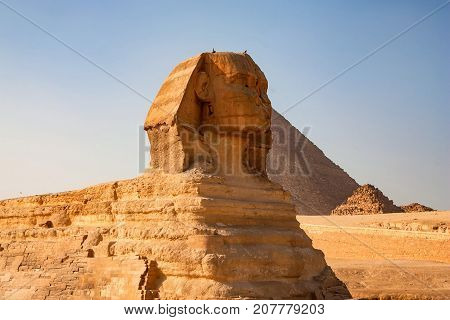 Close view of the Great Sphinx of Giza in front of pyramid of Khufu