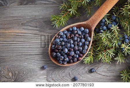 Wooden spoon with seeds of juniper. Juniper branch with berries.