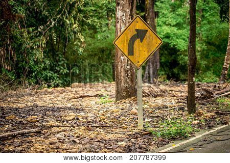 road sign turn in the rain forest