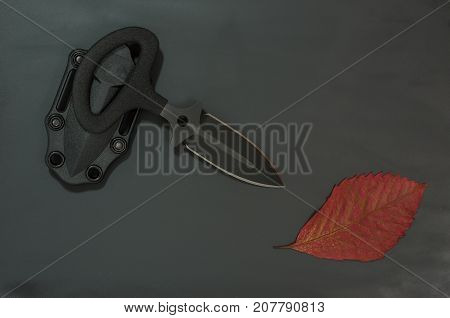 Military Autumn. Autumn Leaf And Black Knife On A Black Background. Diagonal Composition.