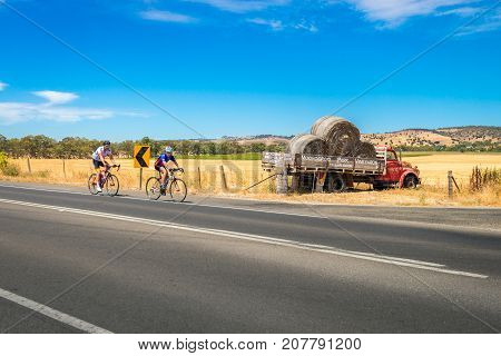 Tanunda South Australia - January 16 2016: Two men riding their bicycles along scenic road in Barossa valley near Moorooroo Park Vineyards