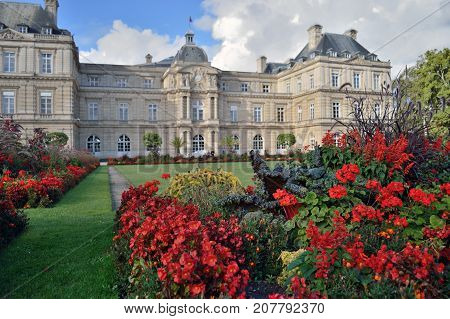 Paris, France - September 9, 2017: Flowers in front of the Luxembourg Palace in Jardin du Luxembourg - focus on the flowers.