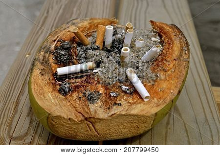A sliced pineapple is used as a retainer for cigarette butts and ashes.