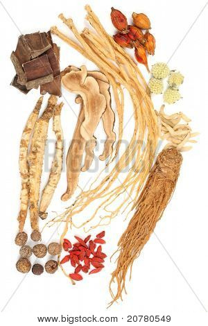 Traditional Chinese Medicine on white background.
