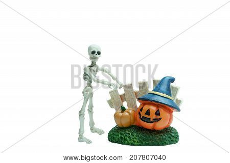 Halloween concept : Plastic human skeleton model and ceramic pumpkins isolated on white background