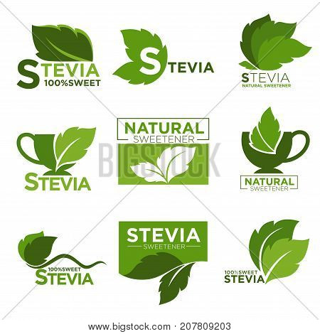 Stevia sweetener green leaf and cup logo templates. Natural sugar substitute for healthy dietetic food and organic product labels. Vector isolated icons set