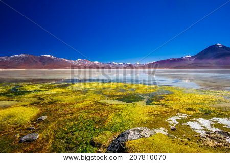 View on Lagoon Blanco amd mountain of the Andes in the Altiplano of Bolivia