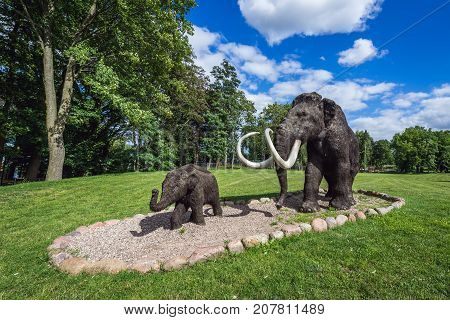 Woolly mammoth sculptures in park in Moryn town Poland