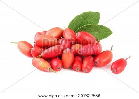 fresh barberry with leaves isolated on a white background.