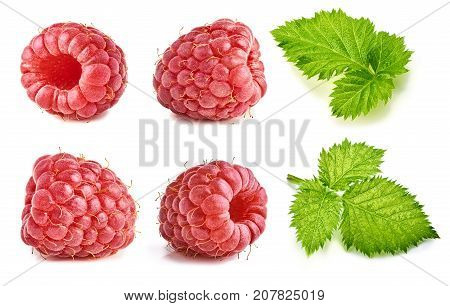 Ripe raspberry isolated on white background. Collection of raspberry and raspberry leaves. Macro photography with great depth of field. DoF.
