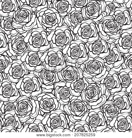Rose flower seamless pattern. Outline black roses on white background. Stock vector.