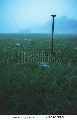 Spade standing in misty field with cobwebs.
