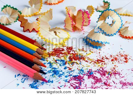 colorful pencils and shavings. close-up. side view
