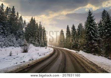 Winding Road Through Winter Spruce Forest