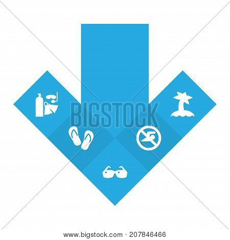 Collection Of Diver Equipment, Palm, No Swimming Sign And Other Elements.  Set Of 5 Beach Icons Set.
