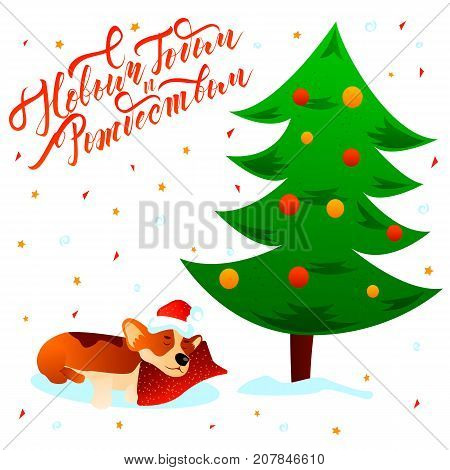 Merry Christmas Happy New Year russian text lettering postcard with cute sleeping cartoon Corgi dog under xmas tree on white background with stars