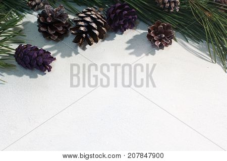 Festive background of winter decoration. Colorful strobilas with pine on white backdrop, free space beneath. Christmas, celebration and New Year decor concept