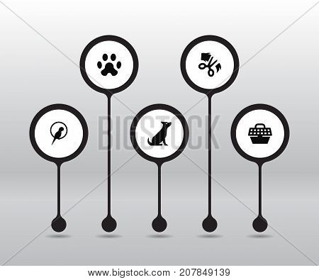 Collection Of Footprint, Bird, Scissor And Other Elements.  Set Of 5 Mammal Icons Set.