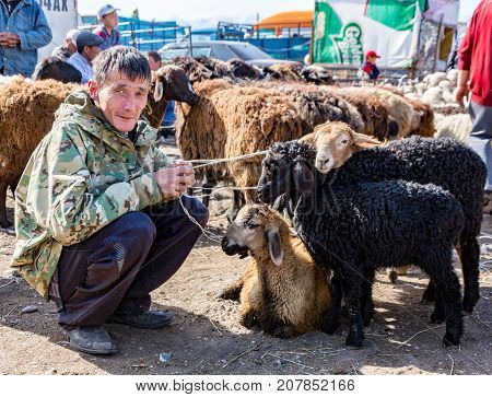 Man Holds Sheep For Sale At Animal Market