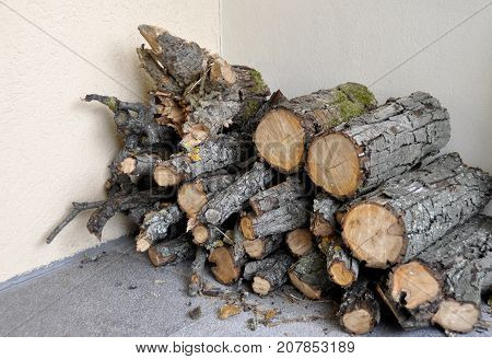 Pile of firewood. Preparation of firewood for the winter