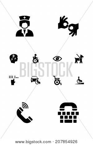 Collection Of Universal Access, Blindness, Pet And Other Elements.  Set Of 12 Disabled Icons Set.