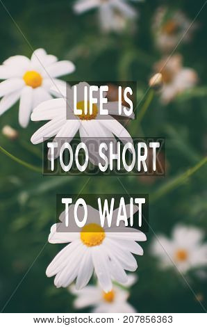 Inspirational And Motivational Quotes - Life Is Too Short To Wait. Blurry Retro Style Background.