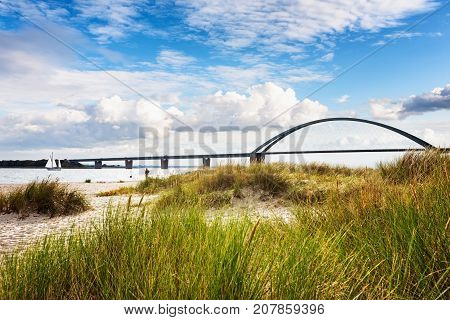 Fehmarn sound bridge. Late summer landscape with beach dune grass and cloudy sky. Vacation background. Baltic sea coast Germany travel destination