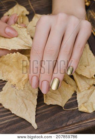 Female hands with gold chameleon nail design holding fallen leaves.