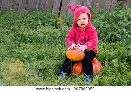 A Small Serious Child In A Purple Dwarf Suit Sits On The Big Pumpkin And Looks In Front. The Symbol