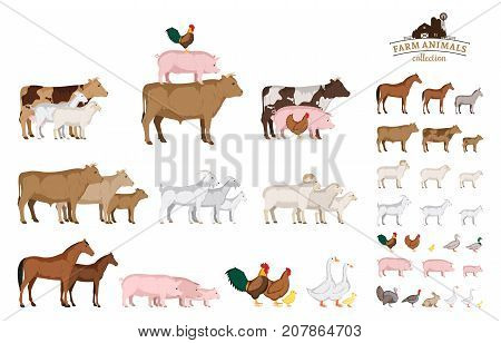 Vector farm animals isolated on white. Livestock and poultry icons for farms groceries packaging and branding