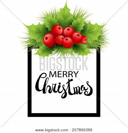Vector realistic holly and fir tree branches Christmas ornament. Holly green leaves and red berries isolated on white background. Merry Christmas calligraphy text