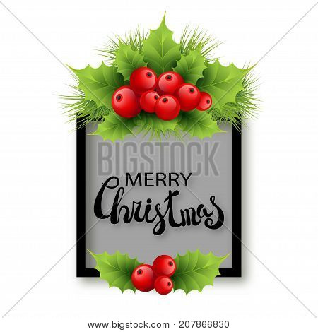 Vector realistic holly and fir tree branches Christmas ornament. Holly green leaves and red berries isolated on white background. Merry Christmas calligraphy text on rectangle frame