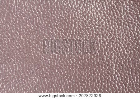 Lilac colored cow leather texture. Closeup. Macro