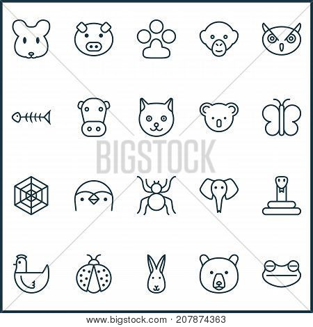 Zoology Icons Set. Collection Of Marsupial, Piglet, Serpent And Other Elements